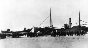 Honoria – 1901