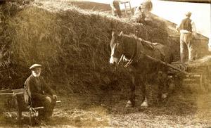 Haytime at Boulby Barns