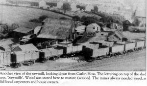 Carnaby Willis Timber Merchants - Saw Mills