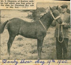 Stanley Chapman Jnr Prizewinner Danby 1960
