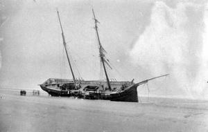 Birhold 1899
